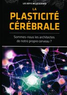 La Plasticité Cérébrale