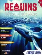 L'Habitat Des Requins: La Baleine à Bosse