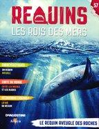Le Requin Aveugle des Roches
