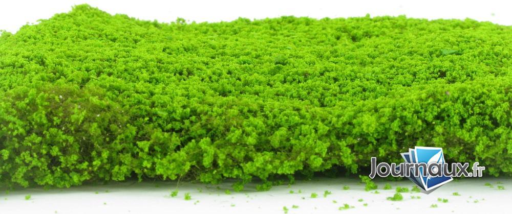Tapis vert printemps