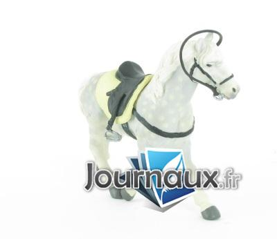 Cheval Andalou avec selle