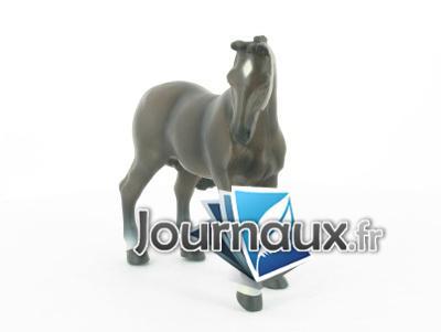 Cheval de selle français