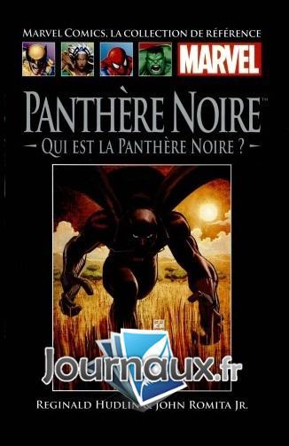 Panthère Noire - Qui est la Panthère Noire ?