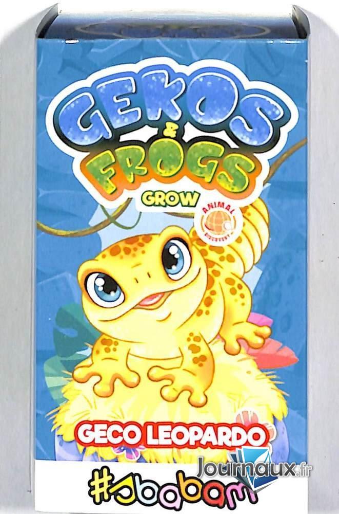 Gekos & Frogs