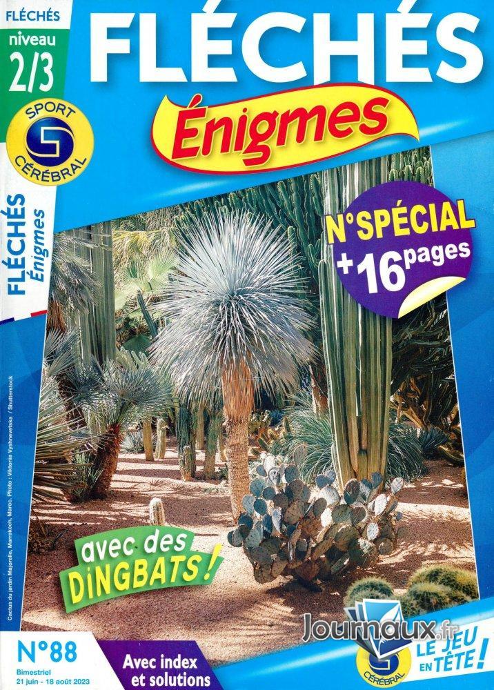 SC Fléchés Enigmes Niv. 2/3
