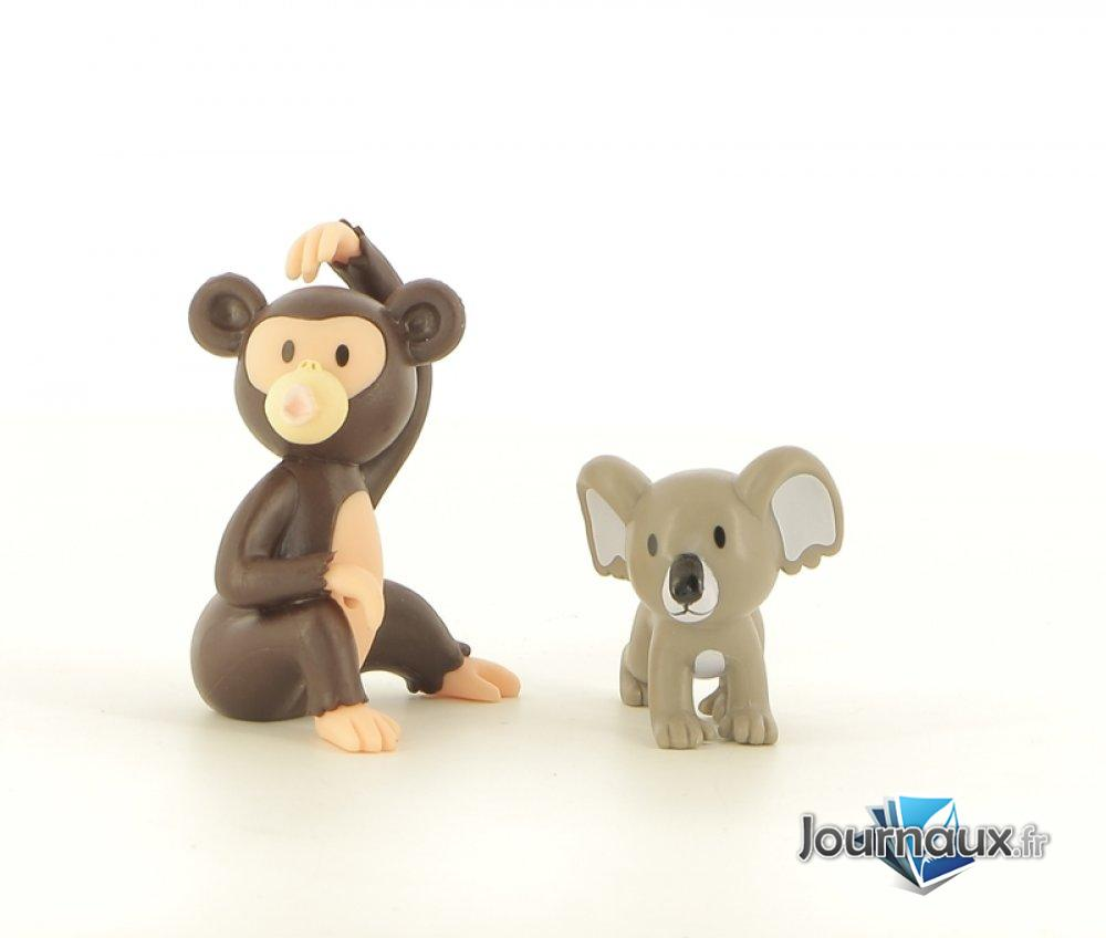 Bongo le Chimpanzé