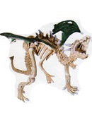 Dragon squelette vert