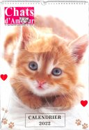 Calendrier 2021 Chat d'Amour