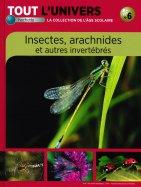Insectes, Arachnides et autres Invertébrés