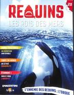 L'Ennemie Des Requins : L'Orque