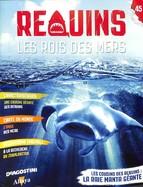 Les Cousins Des Requins: La Raie Manta Géante