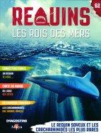 Le Requin Soyeux et les Carcharhinidés les plus Rares