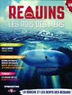 L'Habitat du Requin: La Bouche et les Dents des Requins