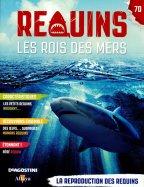 L'Habitat des Requins : La Reproduction des Requins