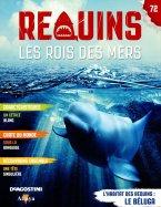 L'Habitat des Requins : Le Béluga