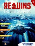 L'Habitat des Requins : La Tortue Luth