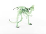 Dragon squelette translucide phosphorescent